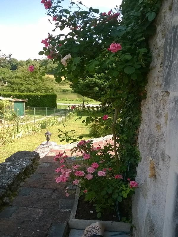 Jardin-Les-bords-de-l-Indrois-Chemille-sur-Indrois-Loches-valdeloire